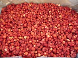 Замразени горски ягоди